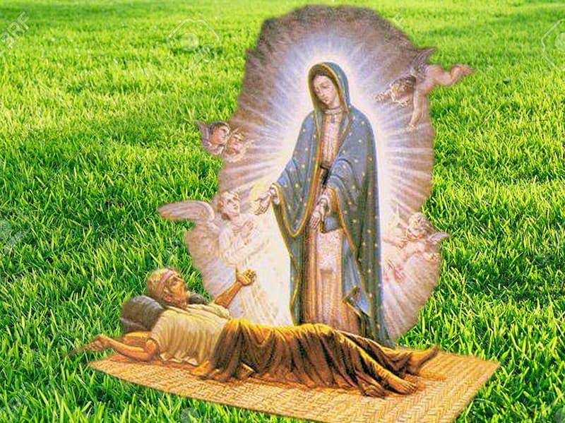 milagros de nuestra señora de guadalupe